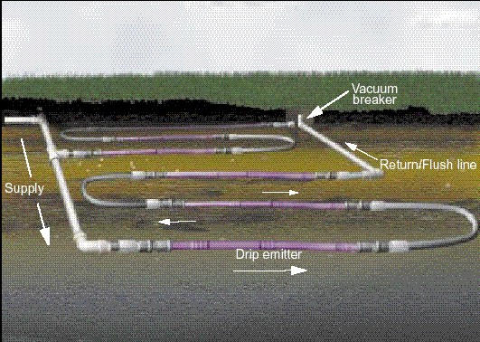 Subsurface Drip Systems